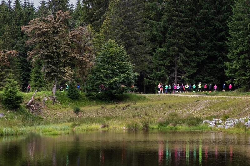 Běhej lesy Slavkovský les